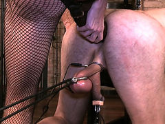 Femdom Pictures and Video from Club dom! Club of Kinky Mistresses hard torture their submissive men. Domination and Humiliation. Cock and ball torture and Ballbusting. Dominatrix Gallery.